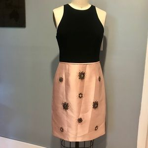 Adrianna Papell. Size 6. Black and pink dress.